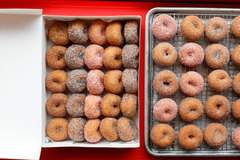 Hot Fresh Donut Minis